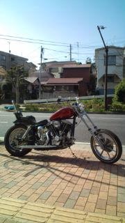 20120319100554.jpg